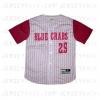 BlueCrabs2_Custom_Baseball_Jersey_L