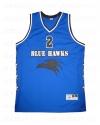 blue-hawks-L